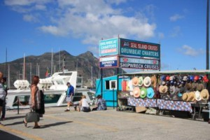 Drumbeat Charters at Hout Bay