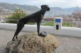 Just Nuisance, Simon's Town