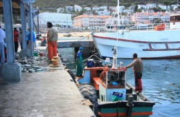 Kalk Bay fishing harbour