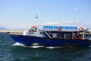 Hermanus-Whale-Cruises