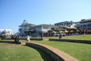 Numerous restaurants where you have lunch and see the whales