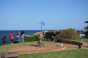 Vistors stand along the cliff tops and view the whales
